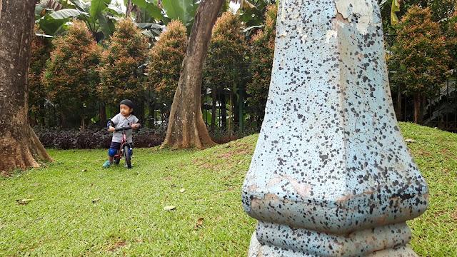 Harga dan manfaat balance bike untuk anak