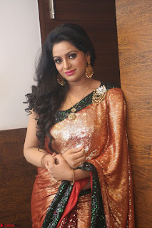 Udaya Bhanu lookssizzling in a Saree Choli at Gautam Nanda music launchi ~ Exclusive Celebrities Galleries 096.JPG