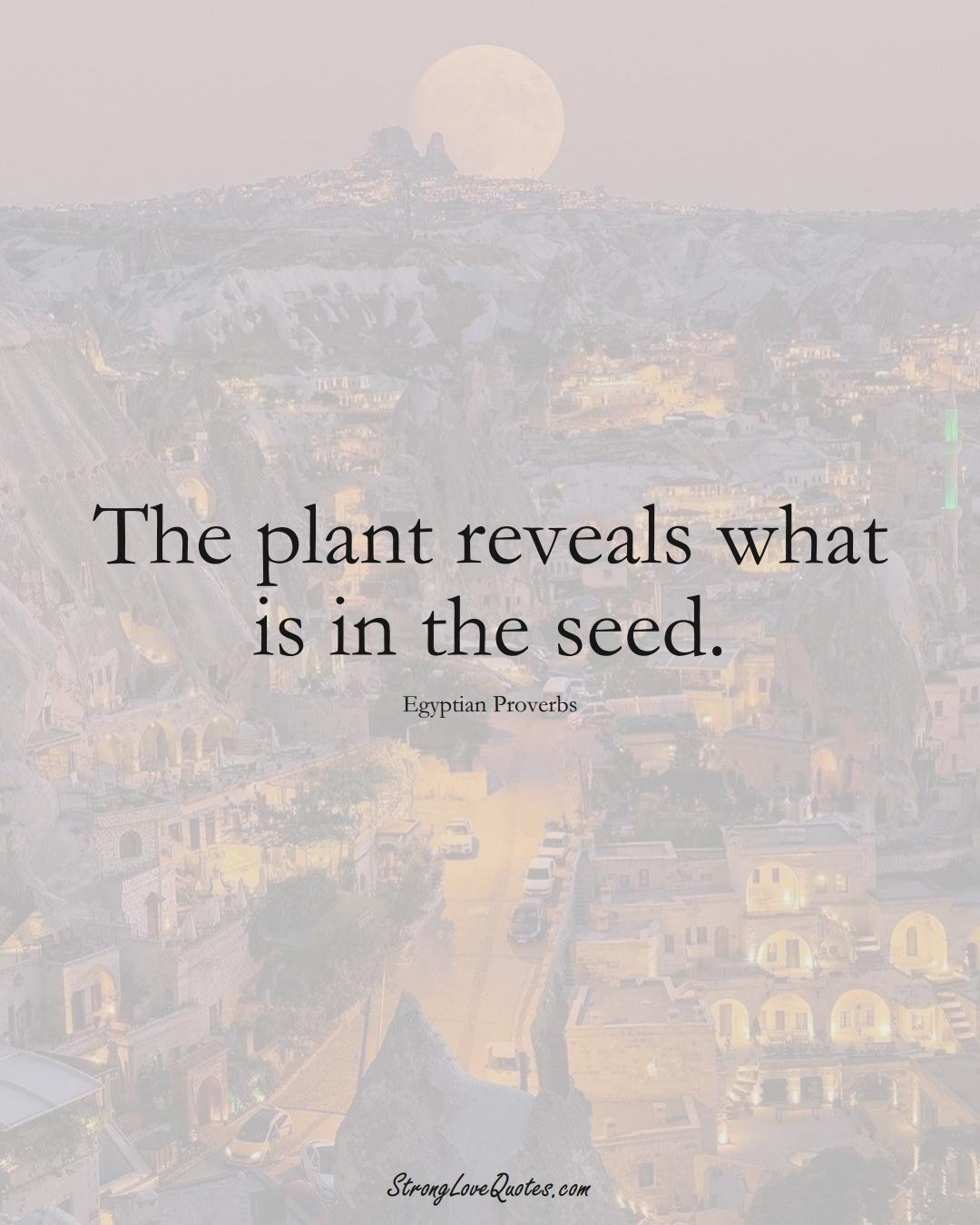 The plant reveals what is in the seed. (Egyptian Sayings);  #MiddleEasternSayings