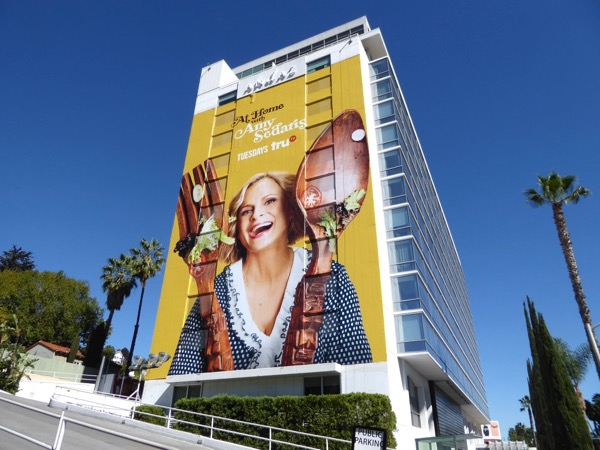 Giant At Home with Amy Sedaris series premiere billboard