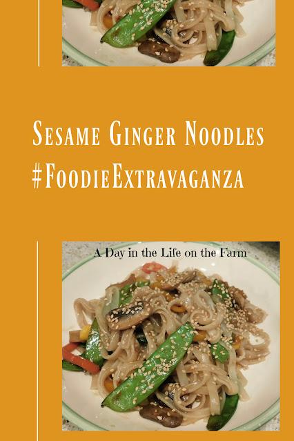 Sesame Ginger Noodles pin