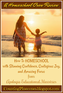 #hsreviews  #homeschoolsupport #startinghomeschool #organizing #howtohomeschool