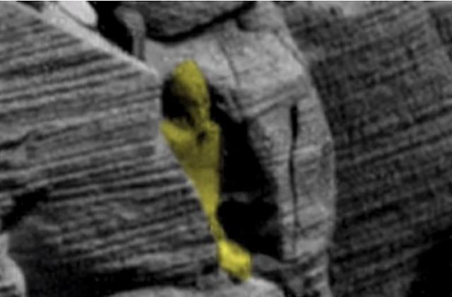 بالصور والفيديو.. لأول مرة في التاريخ.. العثور على تابوت فرعوني على كوكب المريخ