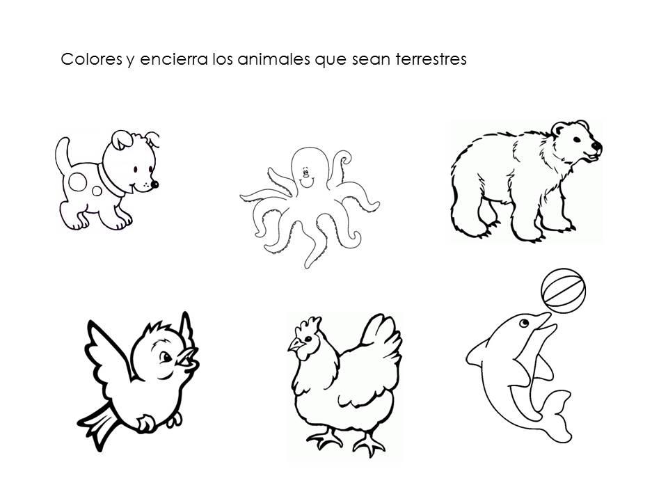 Dibujos De Animales Terrestres Para Colorear E Imprimir: Único Imagenes De Animales Acuaticos Y Terrestres Para
