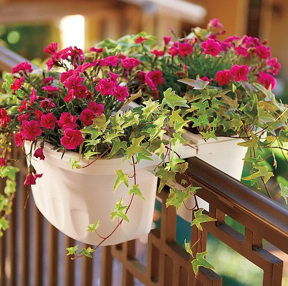 WONDERFUL BALCONY FLOWER BOXES