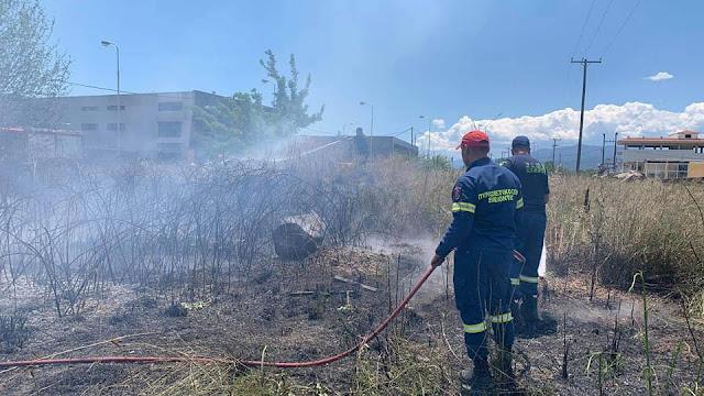 Φωτιά κοντά στο Κουτσοπόδι Αργολίδας - Πρόλαβαν τα χειρότερα οι πυροσβέστες