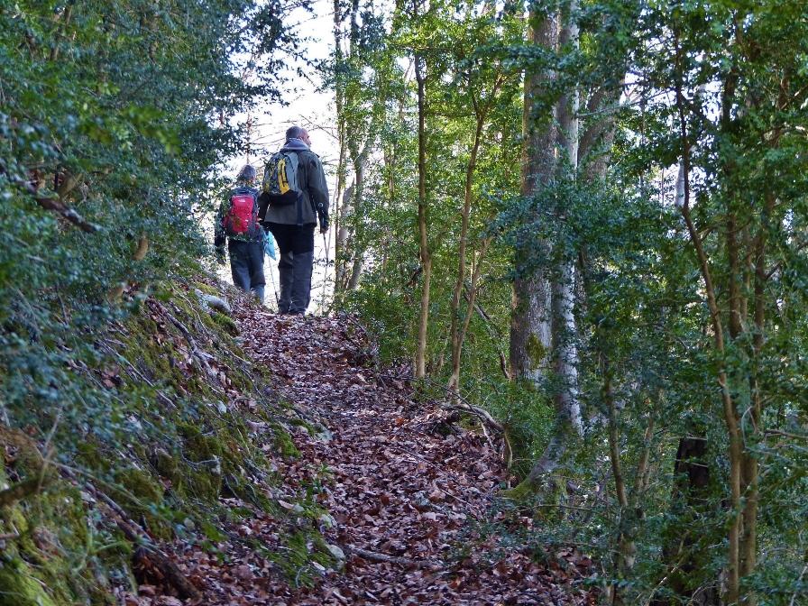 Caminando por el Berguedà: 2017