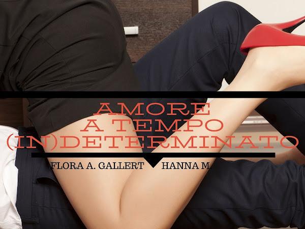 [SEGNALAZIONE] Amore a tempo (In) determinato di Hanna M. & Flora A. Gallert