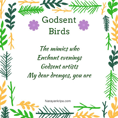 Text image for poem Godsent Birds