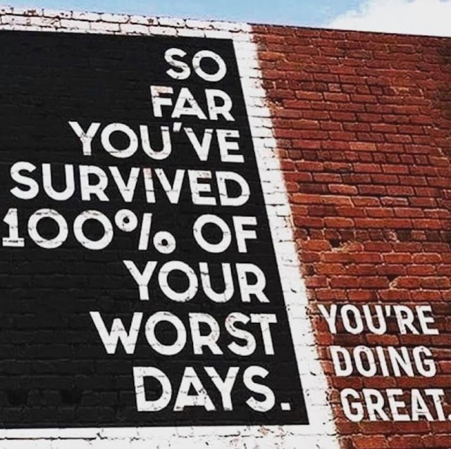 you have survived!