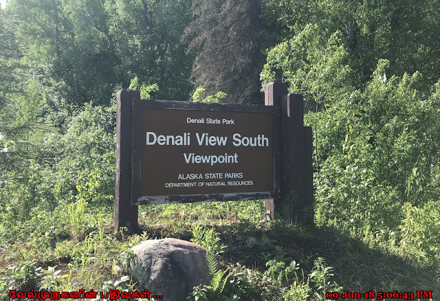 Denali South Viewpoint