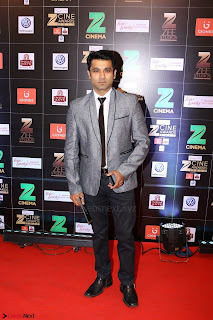 Bollywood Celebrities on the Red Carpet Of Zee Cine Awards 2017 Exclusive 122.JPG