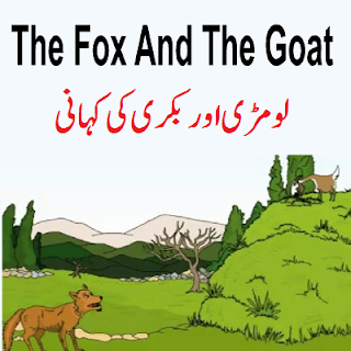 All Classes Stories in English And Urdu For All Kids to Matric Classes