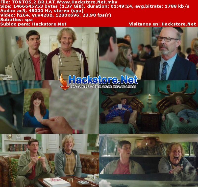 Capturas de Una Pareja Más Tonta (2014) Blu-Ray RIP HD Latino