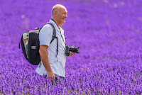Lavender Farm. Courtesy: Dave Wood on Flicker.com