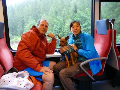 シャモニー渓谷でモンブラン・エクスプレス Mont-Blanc Expressの旅 ミニピン たくあん
