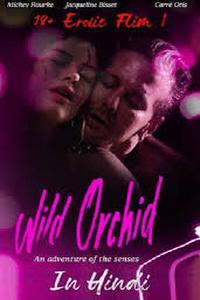 Download [18+] Wild Orchid (1989) Movie (Dual Audio) (Hindi-English) 480p & 720p