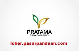 Lowongan Kerja Palembang Terbaru PT. Pratama Nusantara Sakti Mei 2019 (3 Posisi)