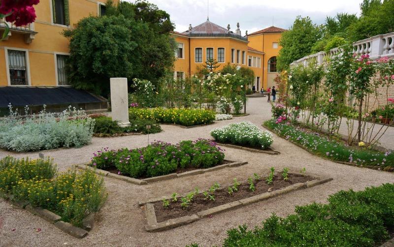 Parterres con plantas medicinales en el jardín botánico de Padua