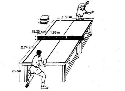 Gambar Ukuran Lapangan Tenis Meja