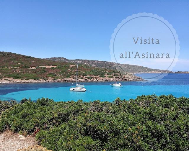 Come visitare l'Asinara esperienza fantastica