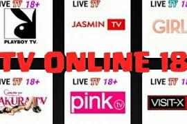 Download Aplikasi KPN TV Apk ( 18 + ) Terbaru