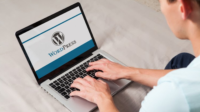 How to make a Professional Wordpress website in 30 minutes.