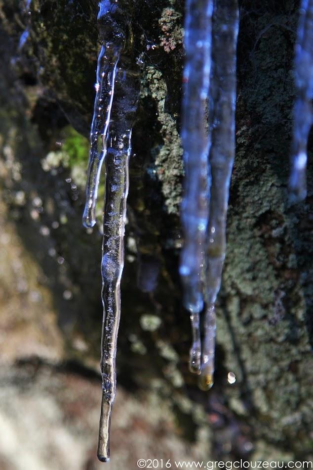 Premières gelées dans les Trois Pignons, (C) 2016 Greg Clouzeau