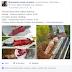 Strategi Postingan Status di Facebook dan FanPage