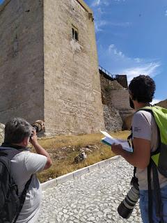 Fotografiando aves en el Torreón