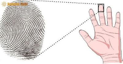 Xem vân tay thường nói lên nhiều điều về bản thân
