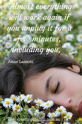 """Almost everything will work again if you unplug it for a few minutes, including you,"" Anne Lamott"
