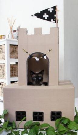 carton et chat 10