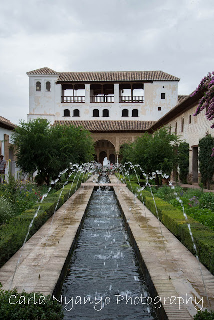 the alhambra 3