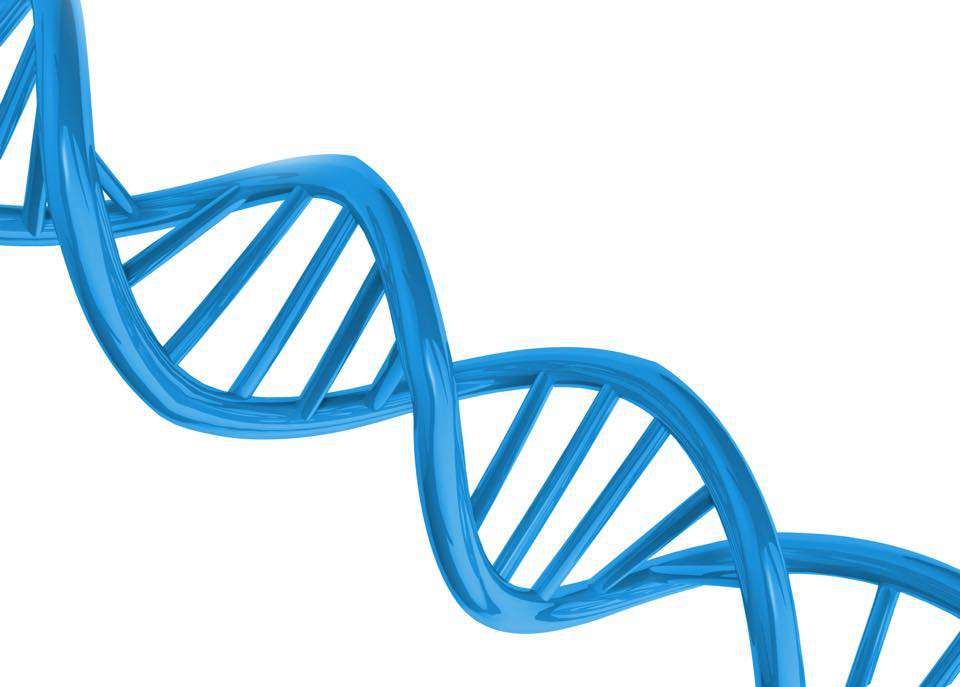 National DNA Day Wishes Pics