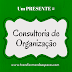 Dica de Presente nº3: Consultoria em Organização Online