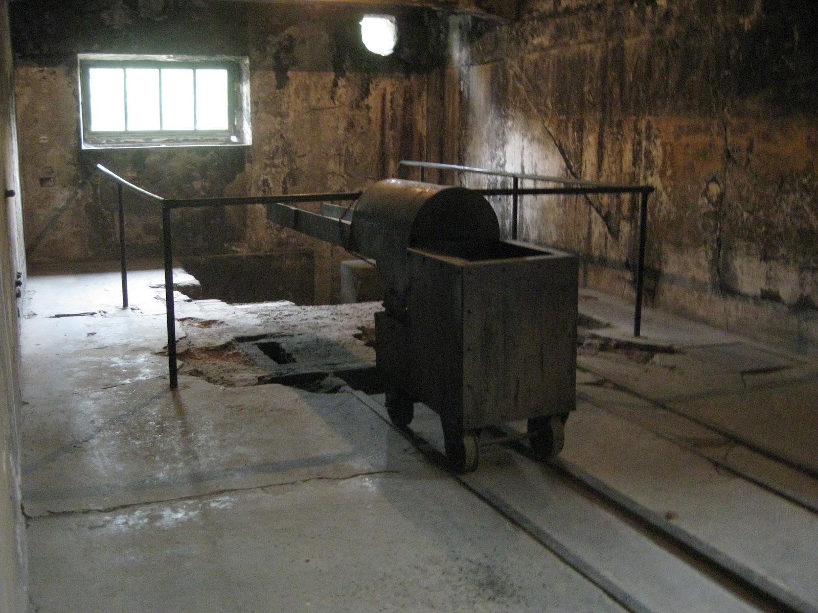 tutto musei Campo di concentramento di Auschwitz