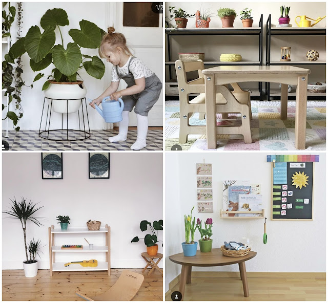 Inspiring plants in Montessori Spaces