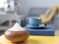 Kenali 5 Manfaat Humidifier Ini Bagi Kesehatan