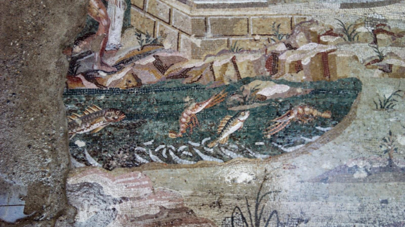 mosaico peixes palestrina - Bate-e-volta à Palestrina