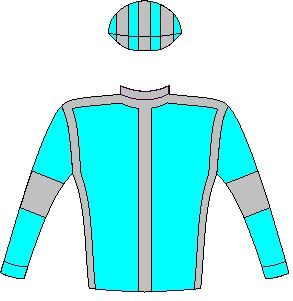 Jockey silks / colours of Messers Greg Bortz & A J Huyssteen - Aquamarine, dark grey seams, aquamarine sleeves, dark grey armbands, striped cap