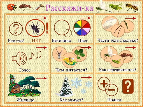 Речецветик Насекомые Подготовка насекомых к зиме