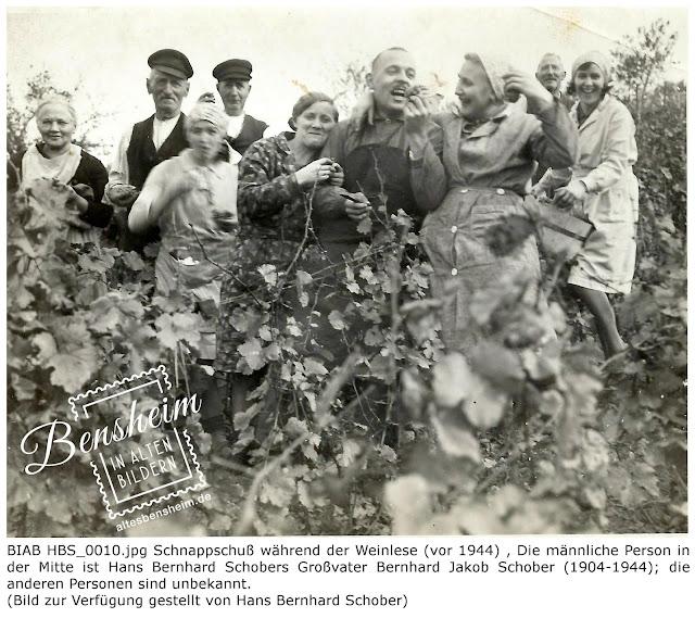 BIAB HBS_0010.jpg Schnappschuß während der Weinlese (vor 1944) , Die männliche Person in der Mitte ist Hans Bernhard Schobers Großvater Bernhard Jakob Schober (1904-1944); die anderen Personen sind unbekannt, Bilder zur Verfügung gestellt durch Hans Bernhard Schober