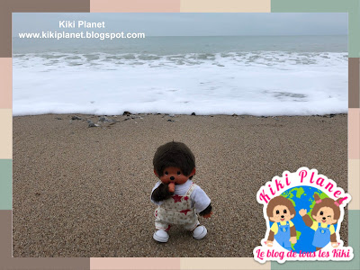 kiki Monchhichi fécamp galets disparus normandie plage Beach missing pebbles