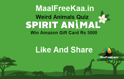 guess animal contest