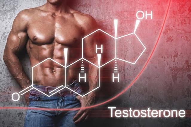 كل ما تعرفه عن التستوستيرون