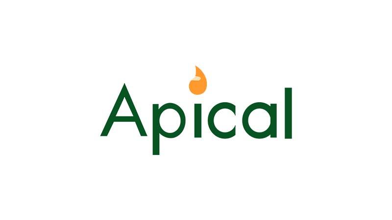 Lowongan Kerja Apical Group Ltd