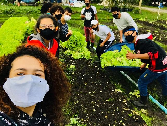 Colheita de verduras na horta educacional contou com os estudantes do Programa Jovem Agricultor do Futuro