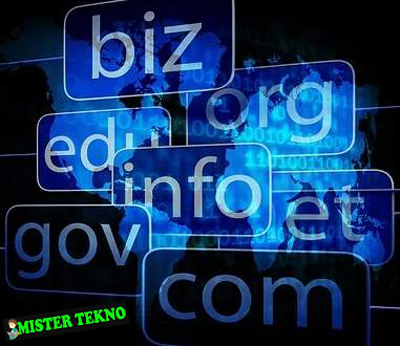 Cara Cek Domain Website