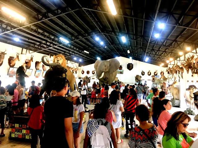 Baluarte ni Singson Safari Gallery Vigan Ilocos Sur